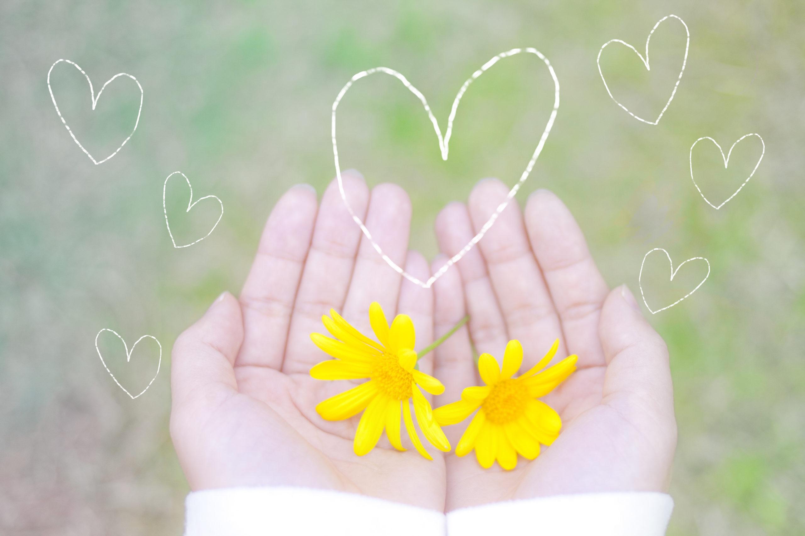 子供の手に花とハートマーク