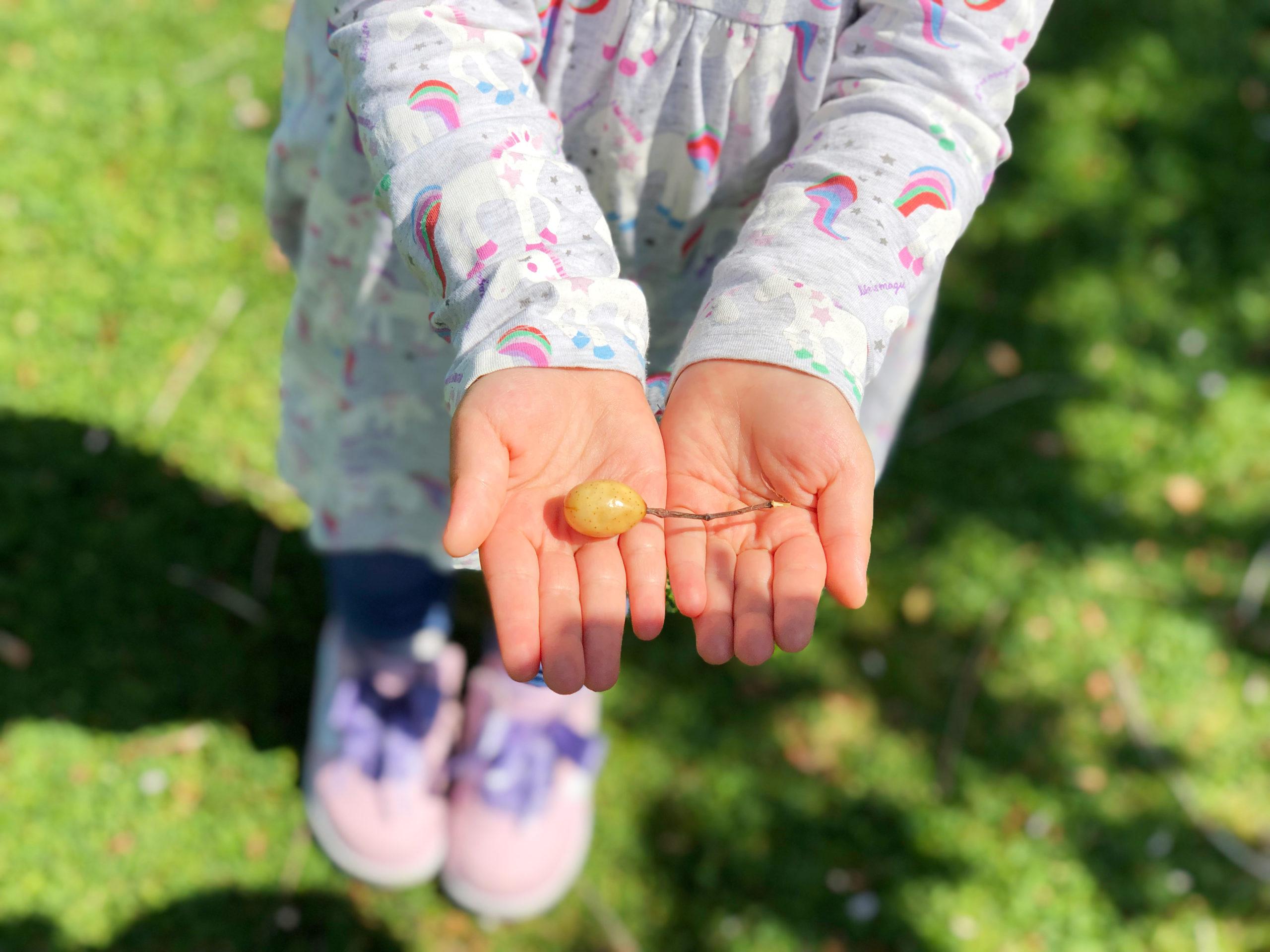 手のひらを見せる子供