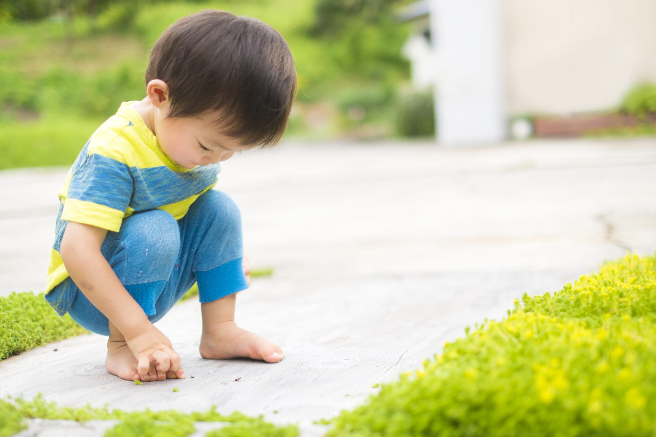 虫を探す男児