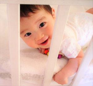 ゲート越しの赤ちゃん